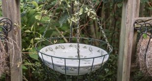 Easy Ways To Add Water To Your Garden