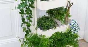 31 Great Indoor Herb Garden Ideas for Healthy Life