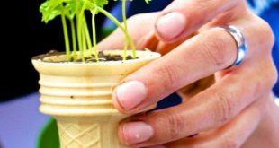 Gardening: 25 Kids Activities