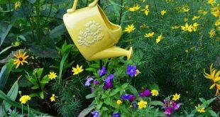 Dekorative Gießkanne hängt an Hirtenhaken. - Beste Garten Dekoration