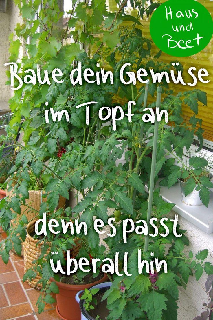 Gemüse anbauen im Topf für Anfänger - Garden Easy