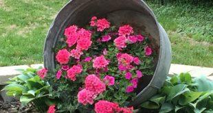 Hanging Washtub with Flowers ... hat das vor Jahren auf Pinterest gesehen und en...