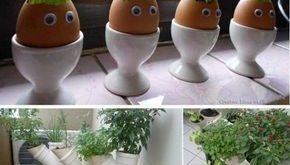 26 Mini Indoor Garden Ideen, um Ihr Zuhause zu grünen - #Garden #grünen #Ideen...