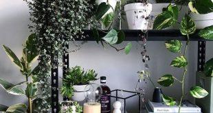 30+ beeindruckende Indoor-Garten-Ideen, um Ihr Zuhause zu erfrischen - #beeindru...