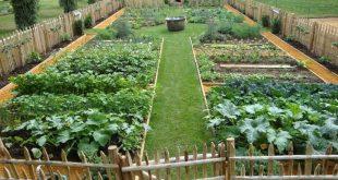 48 beliebtesten Küchen-Garten-Design-Ideen