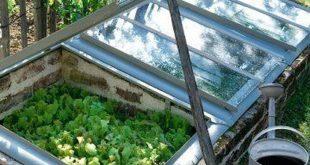 Cozy Small Vegetable Garden Ideas On A Budget 50