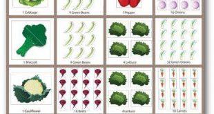 Einfache Tipps für wachsende Karotten