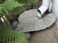 Entfernen Sie das Regenwasser auf saubere Weise. Sollte diese für das Gewächsh
