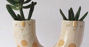 Entzückende Pflanzgefäße bringen ein freundliches Gesicht in Ihren Innengarten