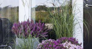 Gartenhaus Inspiration – 23 originelle Ideen für Ihre Ruhe-Oase im Garten #fü