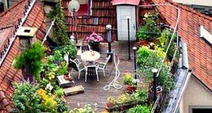 Pflanzen auf Balkonen, Terrassen und Dachgärten (ungeschliffenes Leben) - Francie Romano
