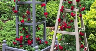 Tower obelisk with planter painted Deep Lead with red roses at RHS Chelsea Flowe...