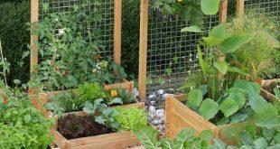 Vertikaler Draht ist eine weitere großartige Option für ein Gartengitter. … – 2019