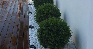 Wir haben eine Sammlung von Gartenstilen zusammengestellt, mit deren Hilfe Sie mit der Planung